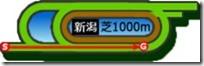 新潟芝1000m