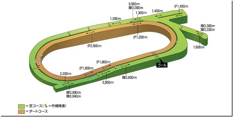 chukyo_course_3d