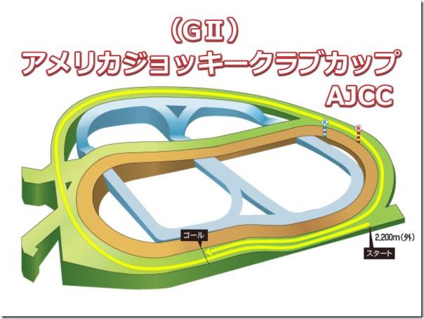 ajcc_course