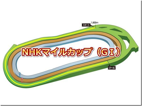 nhkmilecup_course